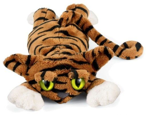 Tygrysek Todd Lanky Cats
