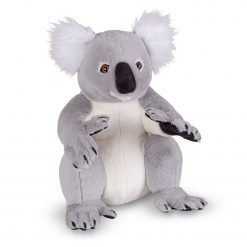 Koala – duży pluszak