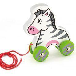 Zebra na sznureczku