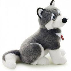 Pluszak pies – husky Marcus