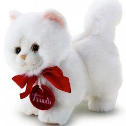 Mała maskotka – kot perski