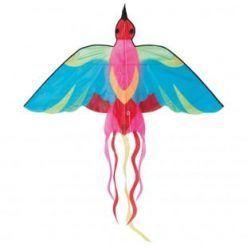 Latawiec Kolorowy ptak